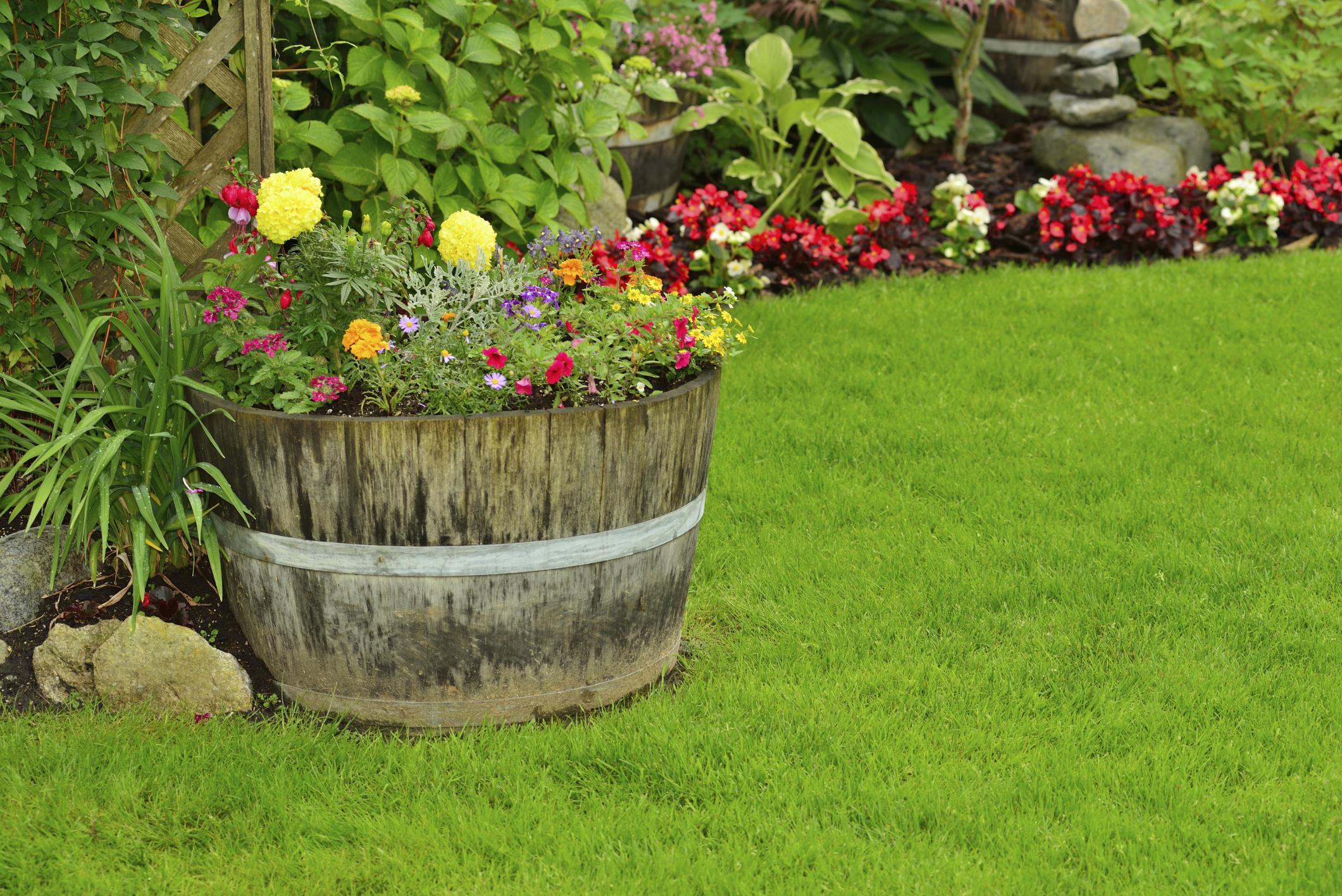 Giudica il tuo giardino dai fiori pensieri e parole famose for Foto case con giardino